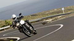 Immagine 13: Kawasaki Versys 1000: ora anche in video