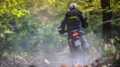 Kawasaki Versys-X impegnata nel bosco