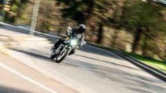 Kawasaki W 800 Classic in azione
