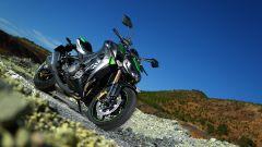 Kawasaki Z1000 2014 - Immagine: 22