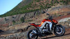 Kawasaki Z1000 2014 - Immagine: 30