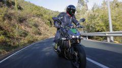 Kawasaki Z1000 2014 - Immagine: 12
