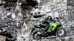 Kawasaki Z1000SX 2014 - Immagine: 2