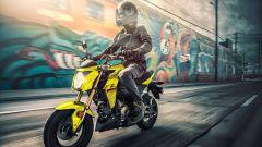 Kawasaki Z125 Pro 2022: la sfida con Honda MSX 125 Grom è cosa relegata al mercato USA
