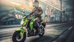 Kawasaki Z125 Pro - Immagine: 5