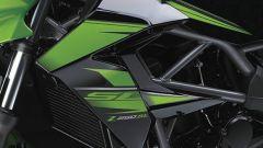 Kawasaki Z250SL - Immagine: 5