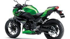 Kawasaki Z250 SL e Z300 - Immagine: 24