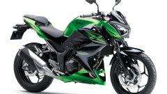 Kawasaki Z250 SL e Z300 - Immagine: 22