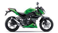 Kawasaki Z250 SL e Z300 - Immagine: 23