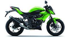 Kawasaki Z250 SL e Z300 - Immagine: 21