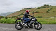Kawasaki Z250 SL e Z300 - Immagine: 13