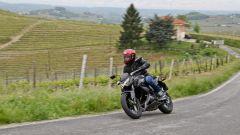 Kawasaki Z250 SL e Z300 - Immagine: 5