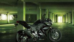 Kawasaki Z250 - Immagine: 16