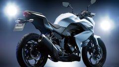 Kawasaki Z250 - Immagine: 14