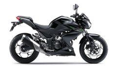 Kawasaki Z250 - Immagine: 11