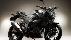 Kawasaki Z250 - Immagine: 6