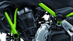 Kawasaki Z650: dettaglio del telaio a traliccio