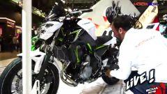 Kawasaki Z650 e Z900 - Live da Eicma 2016