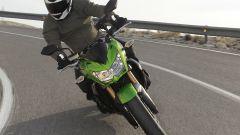 Kawasaki Z750R - Immagine: 9