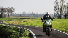 Kawasaki Z900RS CAFE: disponibile sono in Lime Green