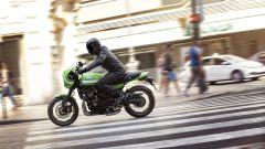 Kawasaki Z900 RS Cafè, tributo alle corse del passato [VIDEO] - Immagine: 5