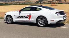 Koni con Mustang