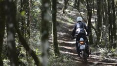 KTM 1190 Adventure R - Immagine: 17