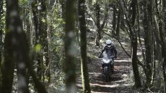 KTM 1190 Adventure R - Immagine: 18