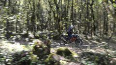 KTM 1190 Adventure R - Immagine: 19