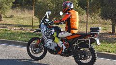 KTM: una 890 Adventure R camuffata, anticipa un nuovo modello? Le foto - Immagine: 4