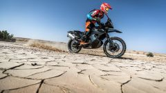 KTM Adventure Rally: una 790 Adventure R alla ultimate race - Immagine: 5