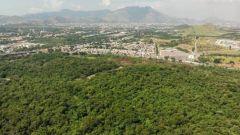 La foresta pluviale di Camboata vista dall'alto. Sullo sfondo c'è Rio De Janeiro