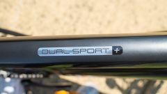 La scritta sul telaio della Trek Dual Sport+