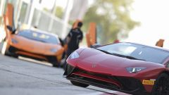 Lamborghini Accademia: in pista con la Aventador SV - Immagine: 1