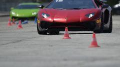 Lamborghini Accademia: in pista con la Aventador SV - Immagine: 69