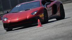 Lamborghini Accademia: in pista con la Aventador SV - Immagine: 67