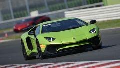 Lamborghini Accademia: in pista con la Aventador SV - Immagine: 16