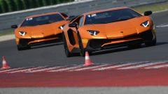 Lamborghini Accademia: in pista con la Aventador SV - Immagine: 3