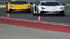 Lamborghini Accademia: in pista con la Aventador SV - Immagine: 20