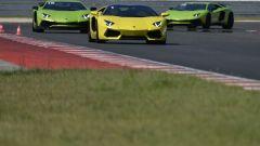 Lamborghini Accademia: in pista con la Aventador SV - Immagine: 24