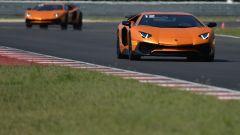 Lamborghini Accademia: in pista con la Aventador SV - Immagine: 53