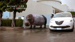 Lancia Ypsilon Elefantino 2013 - Immagine: 10