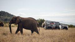 Land Rover Defender 2019: natura selvaggia