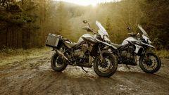 Le due edizioni speciali di Triumph Tiger 1200