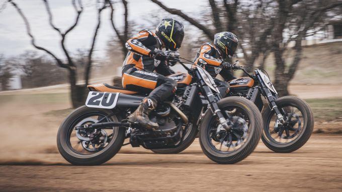 Le Harley-Davidson da flat track fianco a fianco