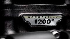 L'etichetta Bonneville sul motore della Triumph Bobber TFC 2020