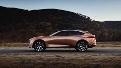 Lexus LF-1 Limitless Concept: la vista laterale sinistra