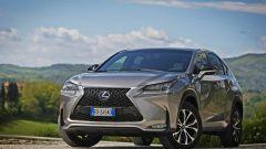 Lexus NX Hybrid: il suv ibrido alla prova del Vigneron - Immagine: 4