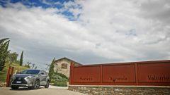Lexus NX Hybrid: il suv ibrido alla prova del Vigneron - Immagine: 8