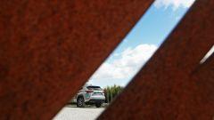 Lexus NX Hybrid: il suv ibrido alla prova del Vigneron - Immagine: 9